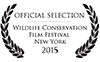 WCFF Official Selection 1